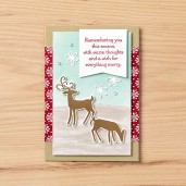 08.01.18_IMAGES_3_DASHING_DEER_HOST